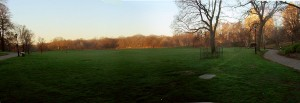 Long_Meadow_Panorama_from_North_Prospect_Park
